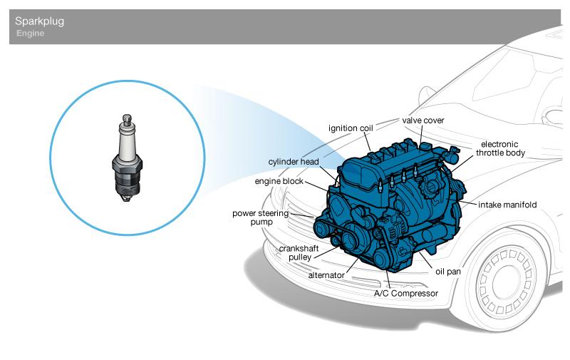 BMW Spark Plug Wire